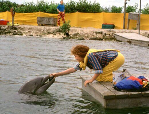 Kijanka i wieloryb