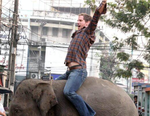 Król słoni
